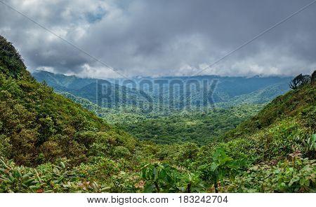 Wide panorama of cloud forest covering Reserva Biologica Bosque Nuboso Monteverde in Costa Rica
