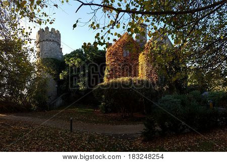 Ancient irish castle and buildings in a park