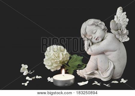 Angel candle and white flower on dark background