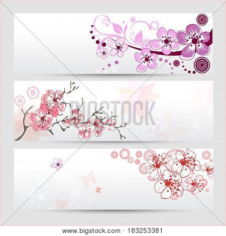 Cherry blossom banners set. Beautiful spring nature scene