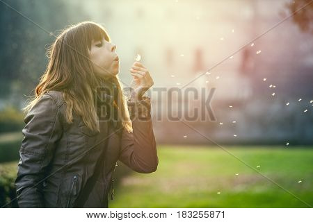 Delicate and fragile girl, sweet hope woman and nature. Blowing a dandelion. Profile illuminated a sweet woman with a dandelion flower in hand.