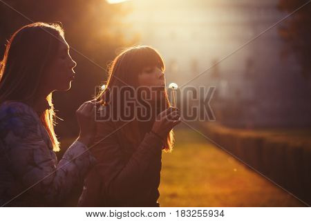 Women freedom and hope. Nature and harmony. Romantic sunset. Two young women taking and blowing a dandelion flower. Warm lighting and intense sunset.