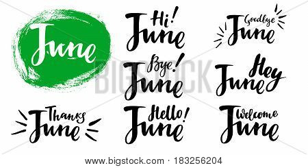 Hello - bye June summer calligraphic set. Vector isolated illustration: brush calligraphy, hand lettering. For calendar, schedule, diary, journal, postcard, label, sticker and decor