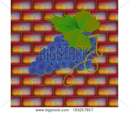 Back background of a brick wall. A ripe bunch of grapes. Vector illustration