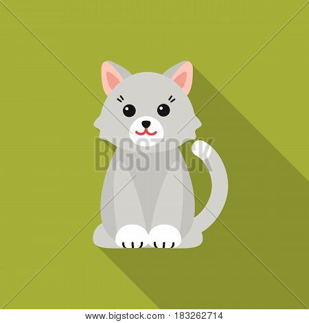 Cat flat icon. Illustration for web and mobile.