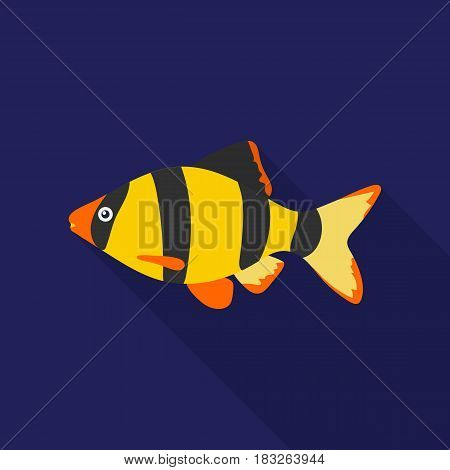 Barbus fish icon flat. Singe aquarium fish icon from the sea, ocean life flat stock vector