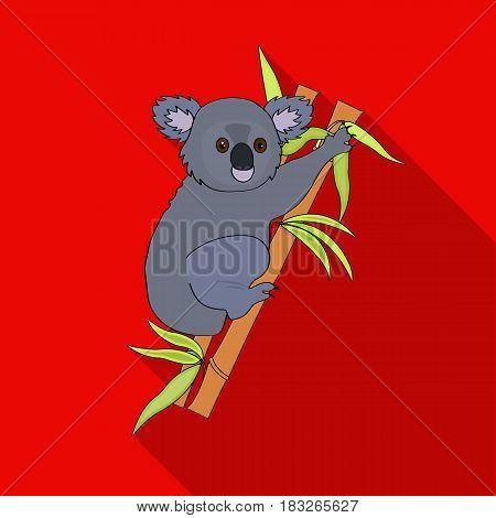 Australian koala icon in flat design isolated on white background. Australia symbol stock vector illustration.