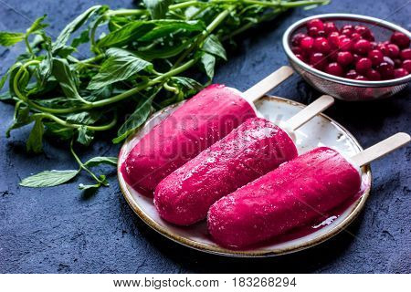 summer dessert with popsicle and red berries on stone desk background
