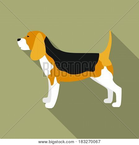 Beagle vector illustration icon in flat design