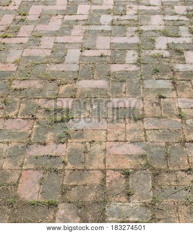 Brick paving with grass and weeds growing in the joins.