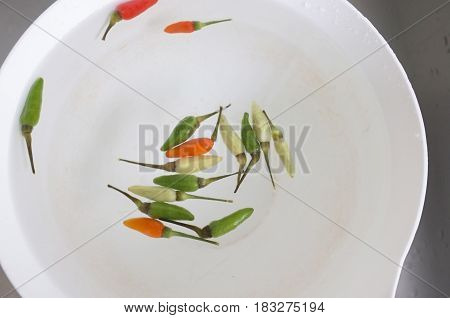 Top view , Chili pepper on water  concept  hot and cold