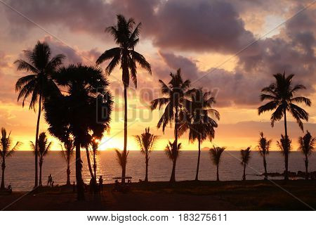 Travel to island Koh Lanta Thailand. Palms on the background of the colorful sunset on a beach.