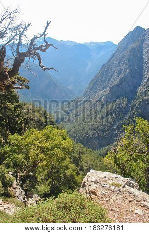 View of Samaria gorge on start trip place before descending in ravine