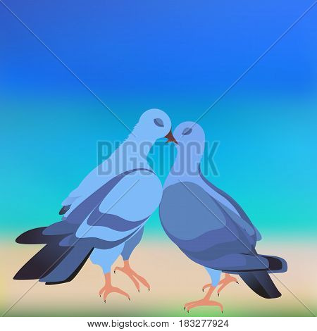 The cooing doves pictured on the background of the beach
