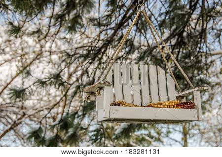 Small white porch swing hanging from a tree as a bird feeder with corn for the birds
