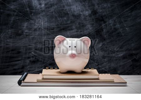 Education Financial Saving. Pink Piggy Bank On Top Of Books With Chalkboard.