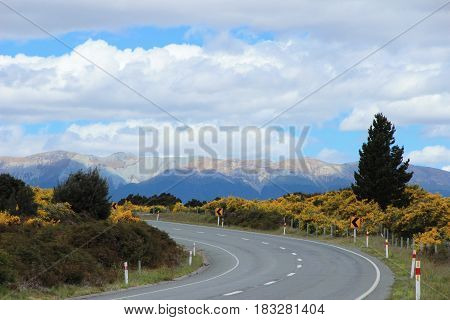 Asphalt Road In New Zealand