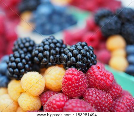 Fresh Berries Include  Sweet Raspberry And Blackberry