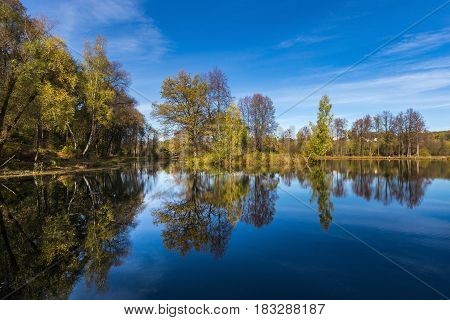 Reflection of small trees in a lake under a blue sky with intermittent clouds
