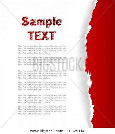 fragmentary paper with place for text