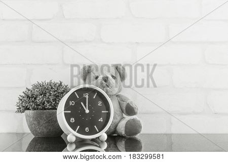 Closeup alarm clock for decorate in 11 o'clock with bear doll and plant on black glass table and white brick wall textured background in black and white tone with copy space