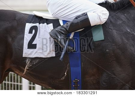Race horse with jockey before the race. Effort background