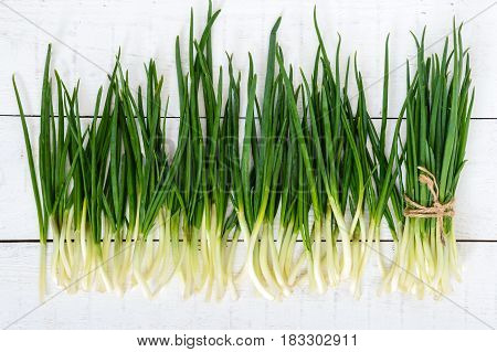Young feathers (leaves) of a green onion on a white wooden background collected in a bundle and scattered. The top view. The first spring greens. Ingredient for salads.