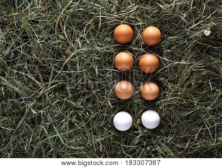 Poultry ecological farm background, fresh chicken eggs. Brown and white eggs on hay, flat lay, top view. Rural still life, natural organic healthy food concept.