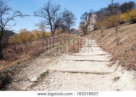 hiking trail to Devin hill with hiking people rocks trees flowering cornus mas plants and clear sky in spring Palava mountains in South Moravia