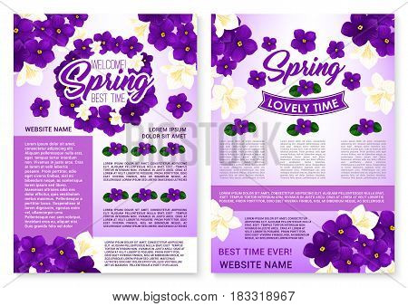 Welcome Spring holiday vector poster with blooming violet viola in bouquets or crocuses flowers bunch and flourish cherry blossom of orchid petals. Springtime quotes and wishes with floral ribbons