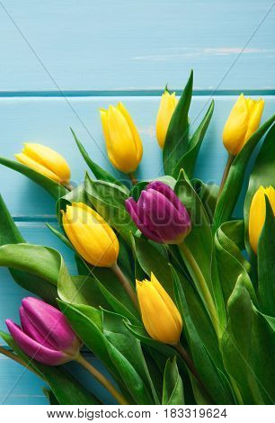 Yellow and violet tulips bouquet on blue wood background, vertical image with copy space. Spring fresh flowers, mockup for greeting card