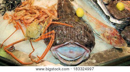 verzameling van vis en schaal dieren op ijs