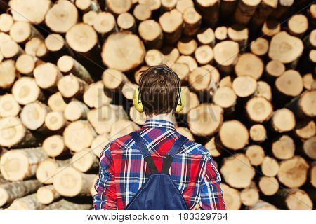Rear view of tree-worker wearing protective headphones