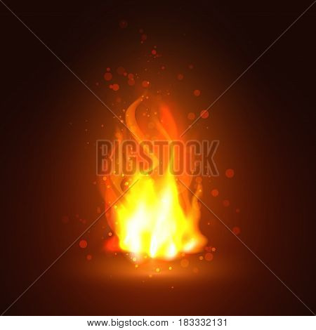 Bright orange Fire flames. Vector realistic elements for design. Vector illustration. Abstract background