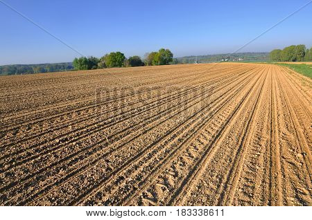 sunny large cultivate field in french countryside