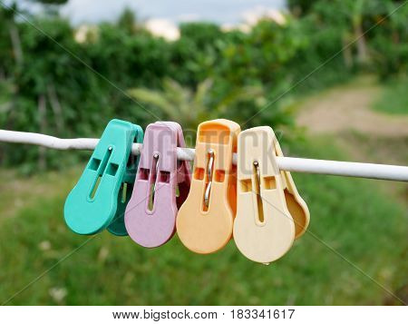 Colorful Clothes Pegs Or Clothespins Hanging On White Rope In Garden