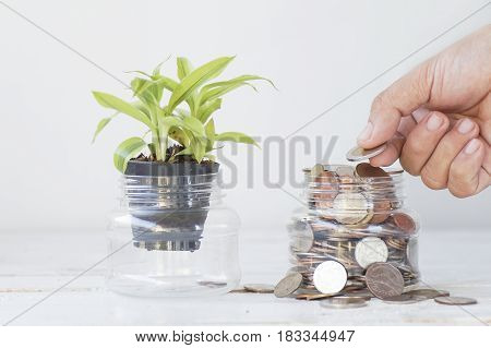 hand put money on bottle of coin concept in save and growth in business