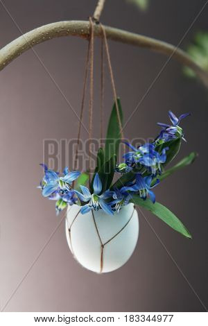 Easter Holiday Background With Flowers In Egg Shell
