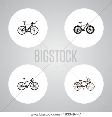 Realistic Competition Bicycle, Journey Bike, Hybrid Velocipede And Other Vector Elements. Set Of Bike Realistic Symbols Also Includes Hybrid, Training, Extreme Objects.