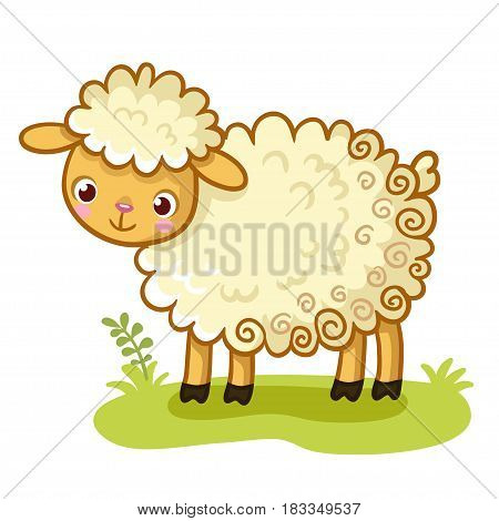 Curly sheep stands on a glade. An animal in the cartoon style. Cute vector lamb.