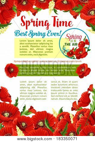 Spring season flower greeting poster template. Red flowers of poppy with green leaf and bud floral frame with text layout in center for springtime holidays invitation card or information banner design