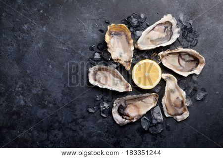 Opened oysters and lemon over ice on stone table. Half dozen. Top view with copy space