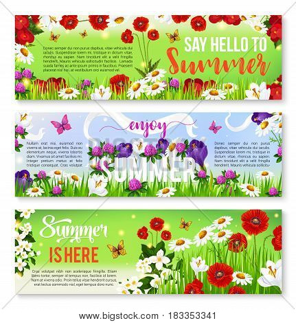 Summer flower greeting banner. Summer season celebration invitation flyer with flower field of daisy, crocus, poppy, jasmine and clover, green grass, butterfly and ribbon with wishes of Happy Summer