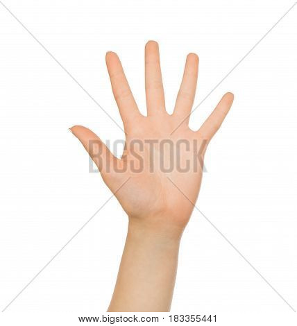 Take five. Hand gesture - outstretched open palm on white isolated background, copy space, close-up