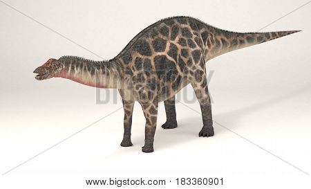 3D Computer rendering illustration of Dicraeosaurus dinosaur
