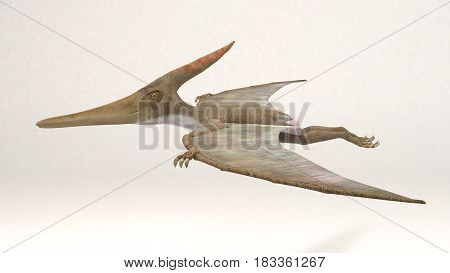 3D Computer rendering illustration of Pteranodon dinosaur