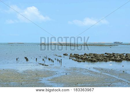 Oyster Farm at Ang Sila Beach Chonburi Province Thailand.