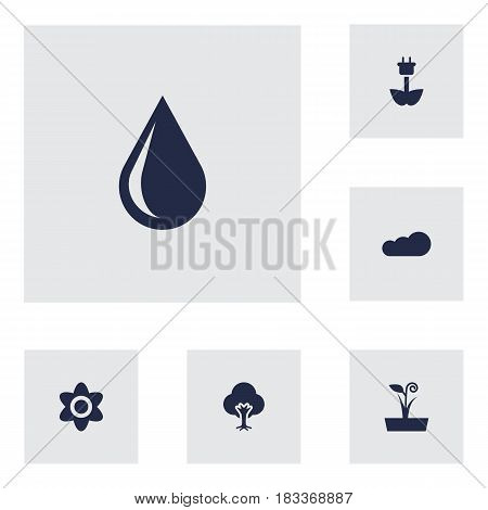 Set Of 6 Natural Icons Set.Collection Of Overcast, Tree, Bloom And Other Elements.
