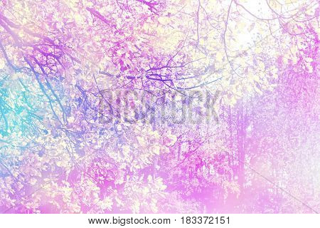 autumn landscape with bright colorful foliage. Indian summer.