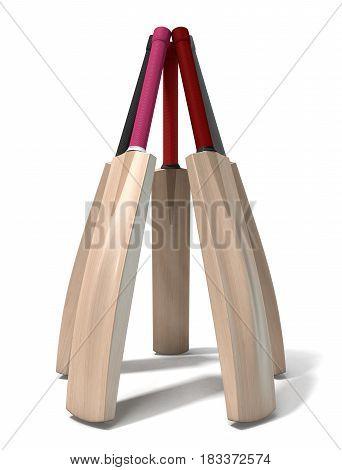 Cricket Bat Circle